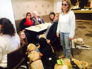 """conference attendees enjoying their lunch; dog guides everywhere!"""">"""